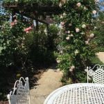 giardino-acetaia-dei-bago-sedia-tavolo-esterno-fiori