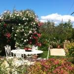 acetaia-dei-bago-giardino-tenuta